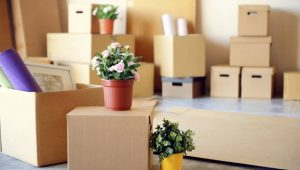 Packing Service In Gurgaon