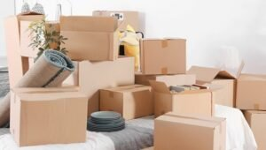 Packers and Movers Defence Colony Delhi