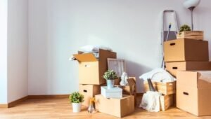 Packers and Movers Green Park Delhi