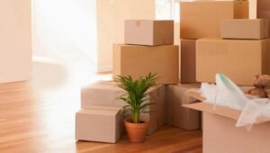 Packers and Movers Hapur