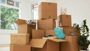 Packers and Movers Jor Bagh Delhi