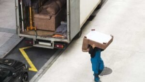 Packers and Movers Moradabad