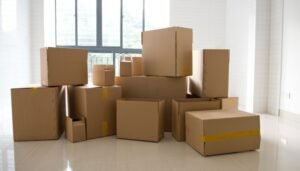Packers and Movers Nangloi Delhi