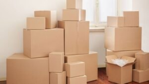 Packers and Movers Saket Delhi