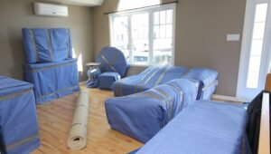 Packers and Movers Sector 17 Gurgaon