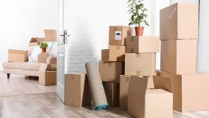 Packers and Movers Sector 20 Gurgaon