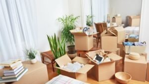 Packers and Movers Sector 56 Gurgaon